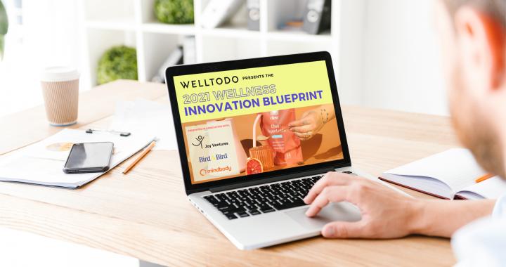 Welltodo Innovation Blueprint